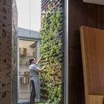 5-jardin vertical