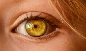 eye-2050738_640
